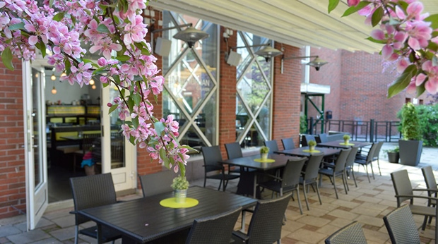 Cherry blossoms and seating area at the terrace at Quality Hotel Galaxen in Borlänge